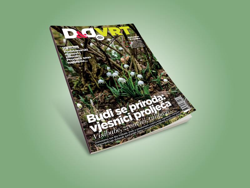 D&Dvrt_cover