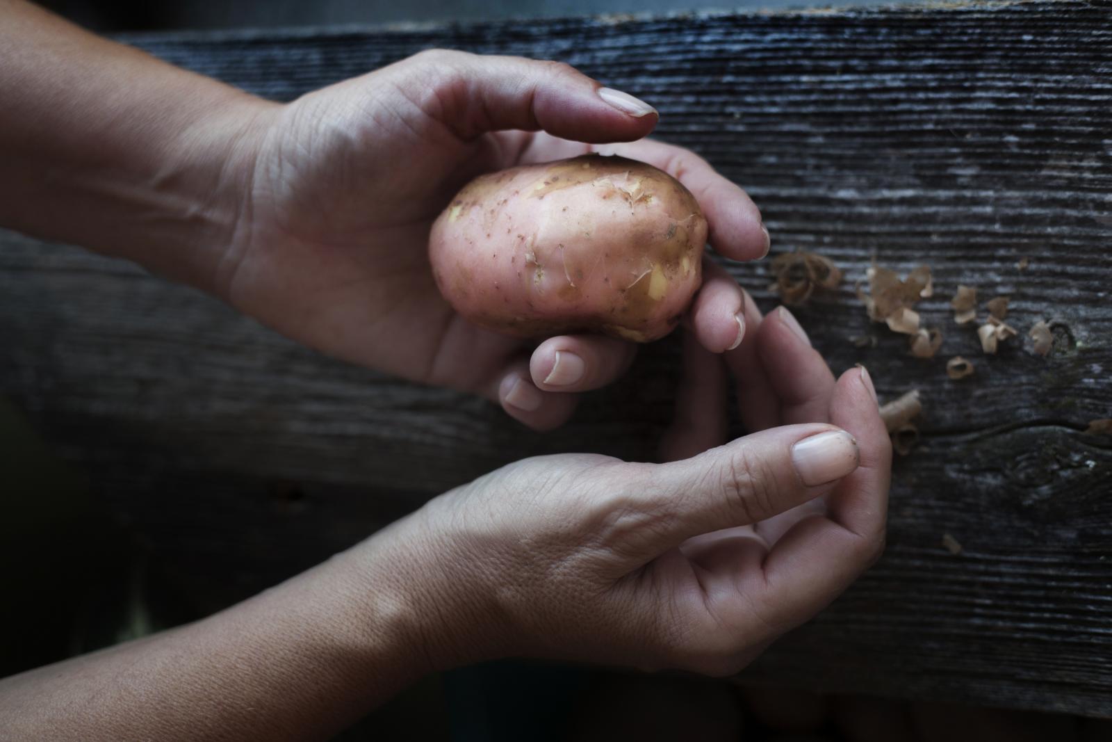 Samo oni koji su u rukama držali plod svog truda znaju koliko je to dobar osjećaj..,