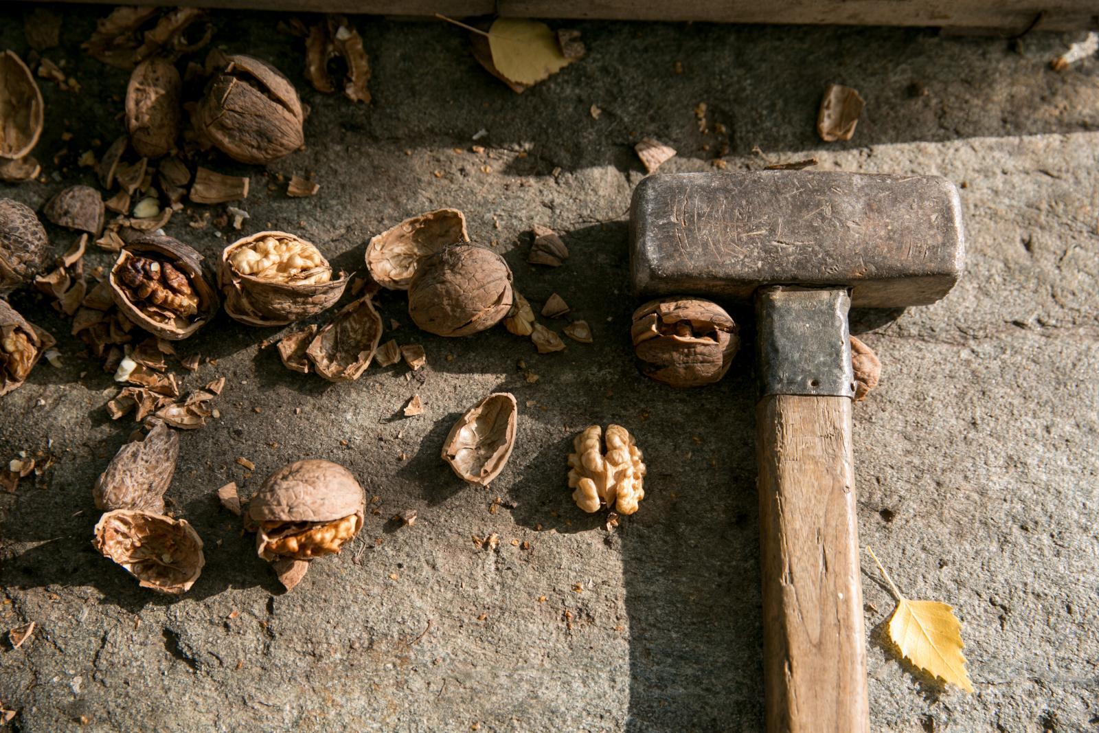 Orašasti plodovi, a posebno orah, povoljno djeluju na naše zdravlje.