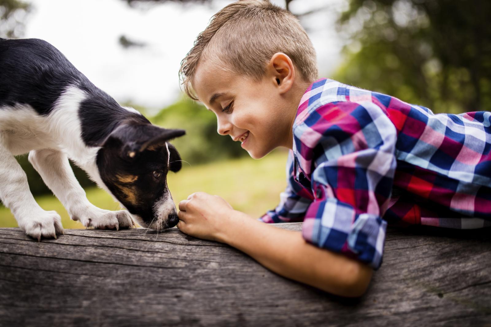 """Uz """"četveronožnog"""" člana obitelji vaše dijete ima manje šanse da oboli od alergije i kožnih ekcema."""