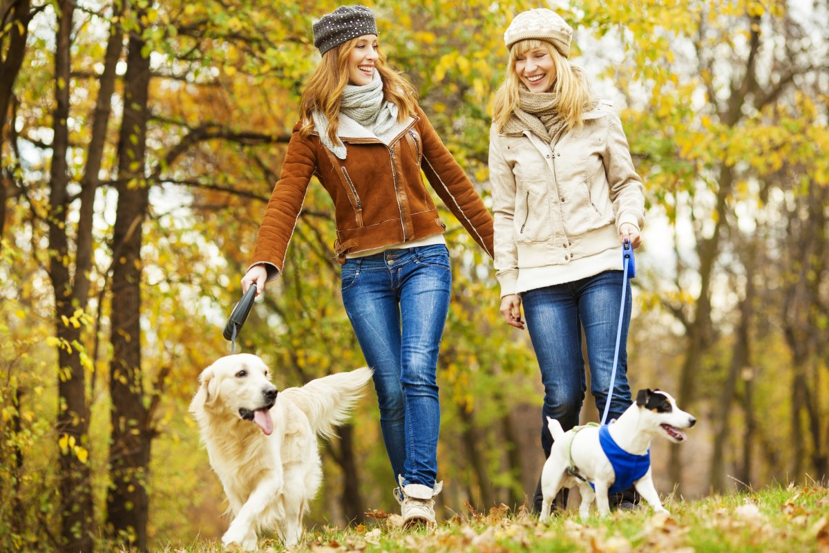 Osjećaj nadutosti je vrlo neugodan, no i kratka šetnja mogla bi biti od pomoći
