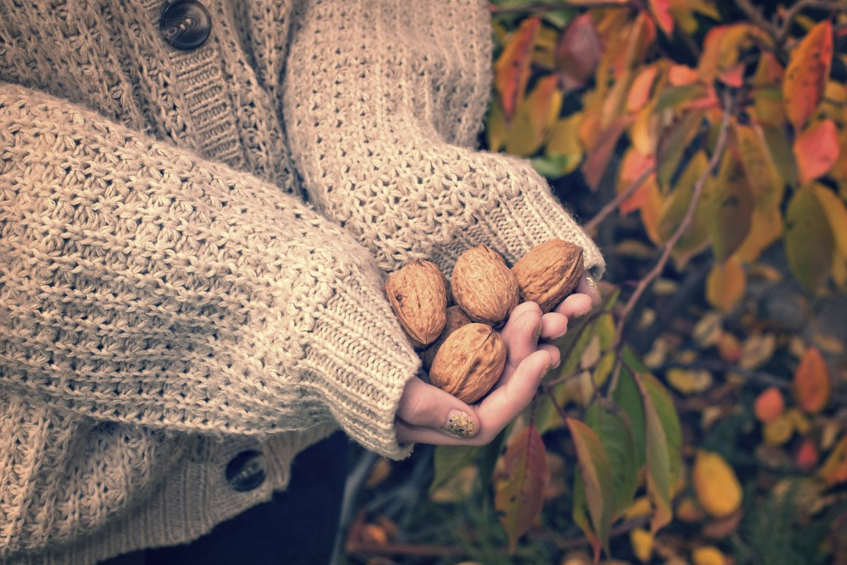 Žene koje su jele šaku oraha na dan tijekom šest mjeseci u prosjeku su izgubile oko osam posto svoje težine