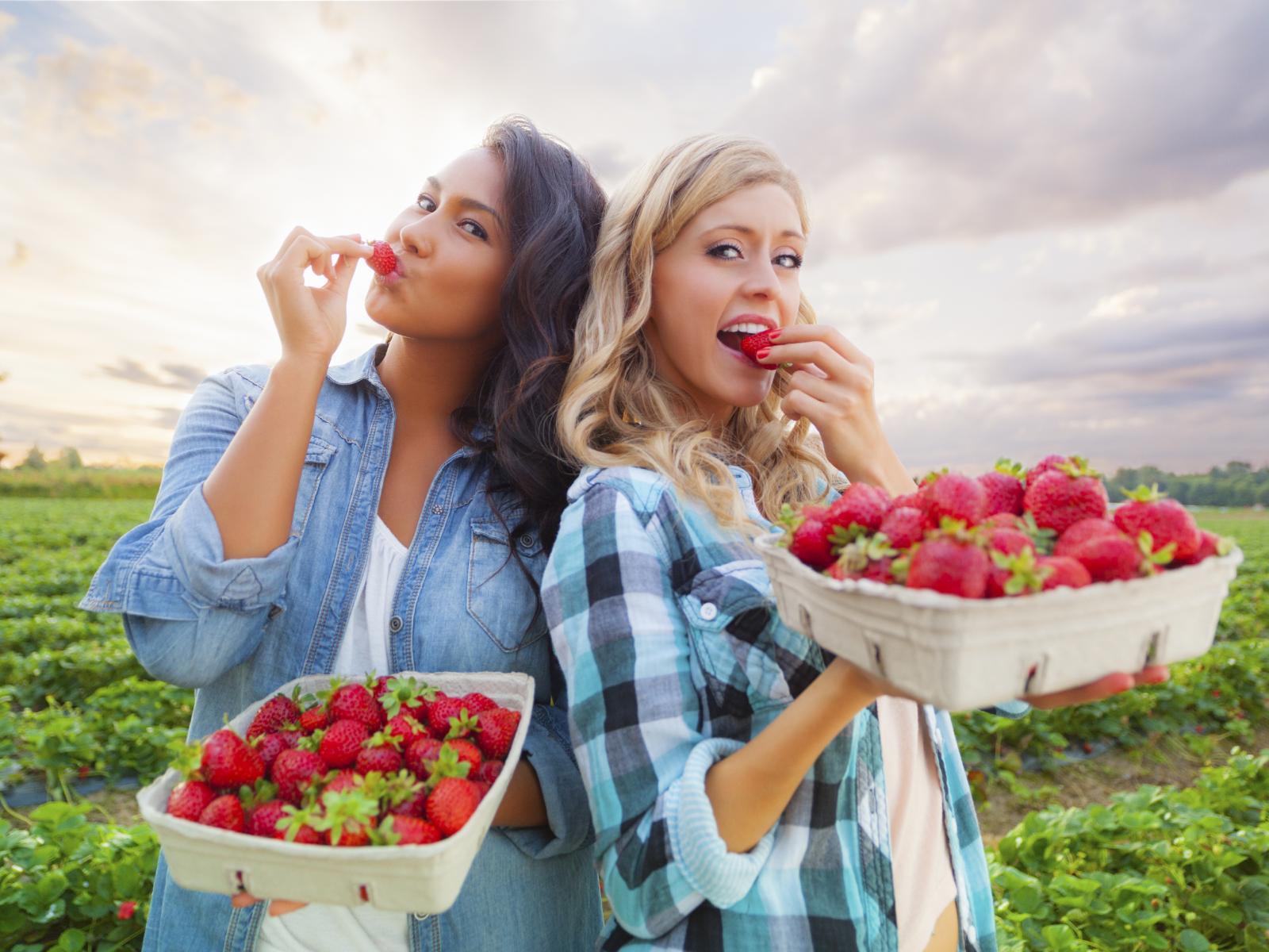 Polako nam na tržnice stižu domaće jagode, iskoristite prigodu i nahranite kosu vitaminom C.