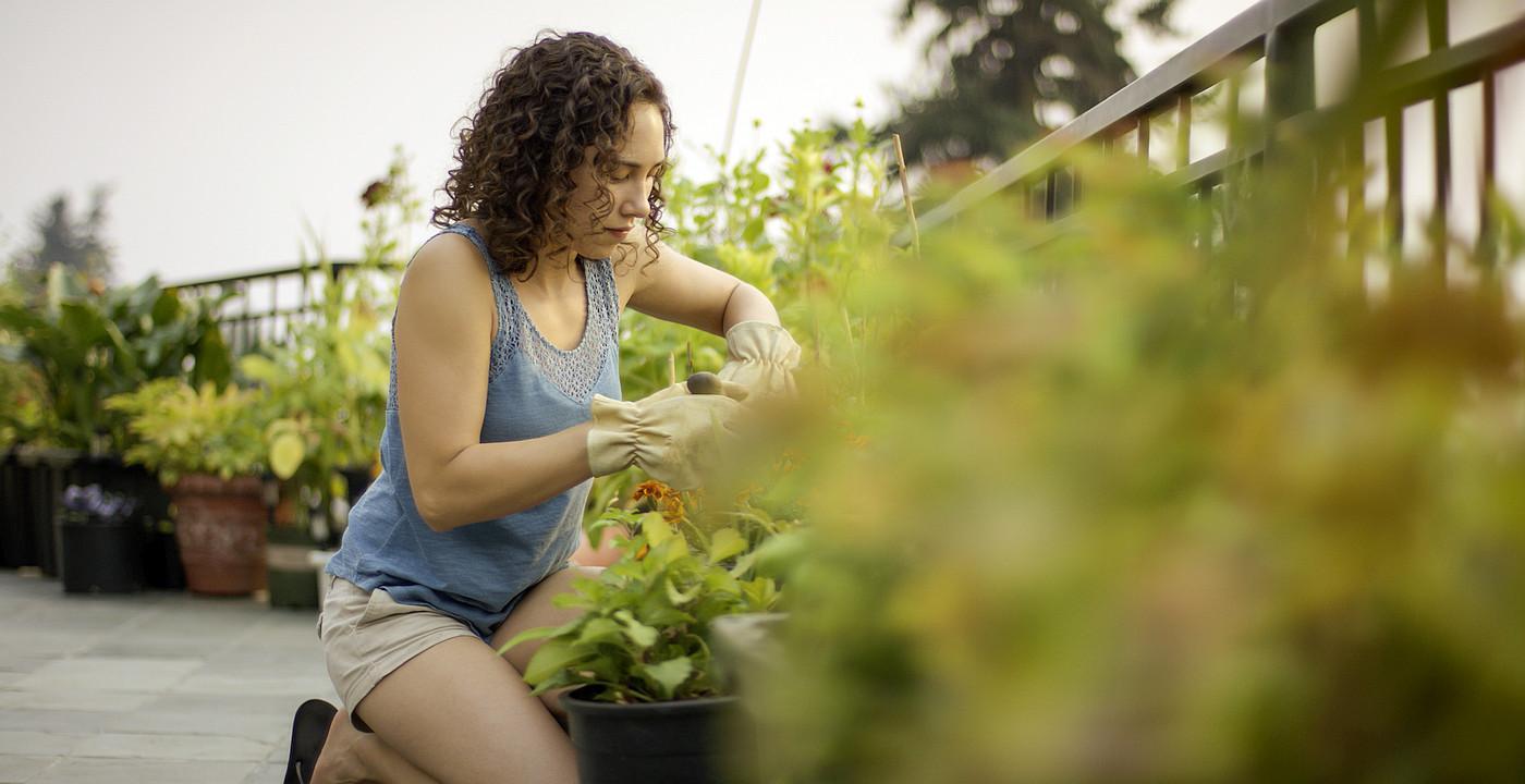 Vrtlari-hobisti svoje stambene eksterijere pretvaraju u prava mala gospodarstva!