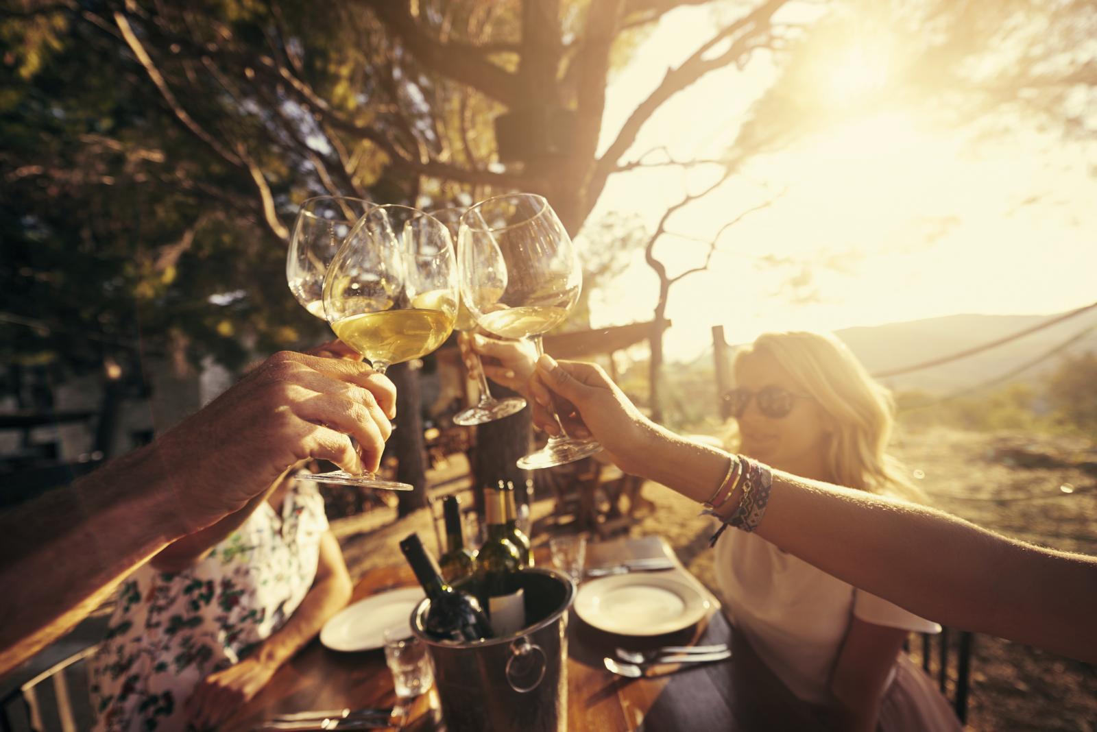 Je li u vinu istina, doznajte sami. Ono što vam mi možemo otkriti je kako istinski uživati u svakoj njegovoj kapljici...
