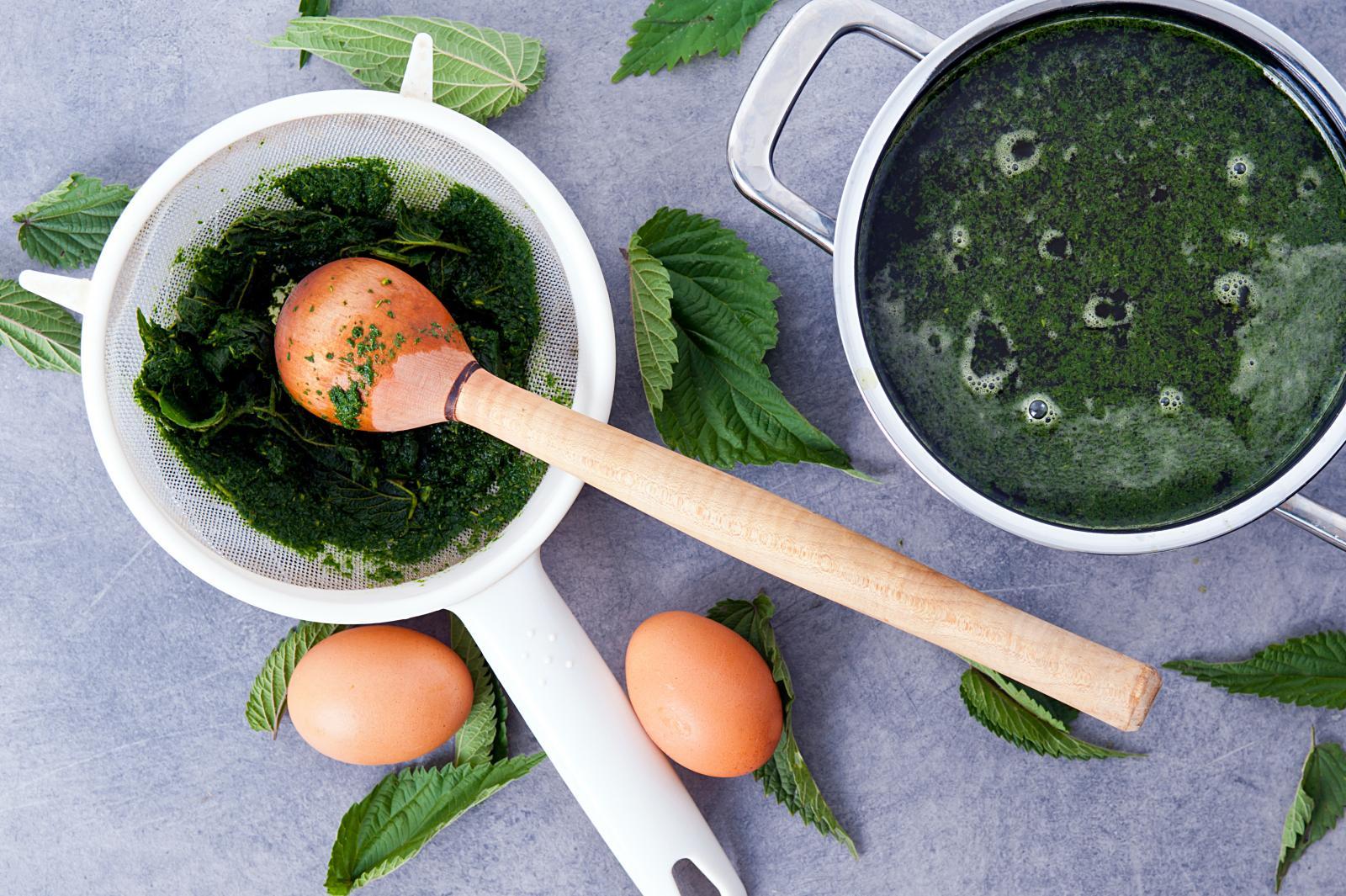 Iskoristite proljeće i obogatite koprivom svoj jelovnik.