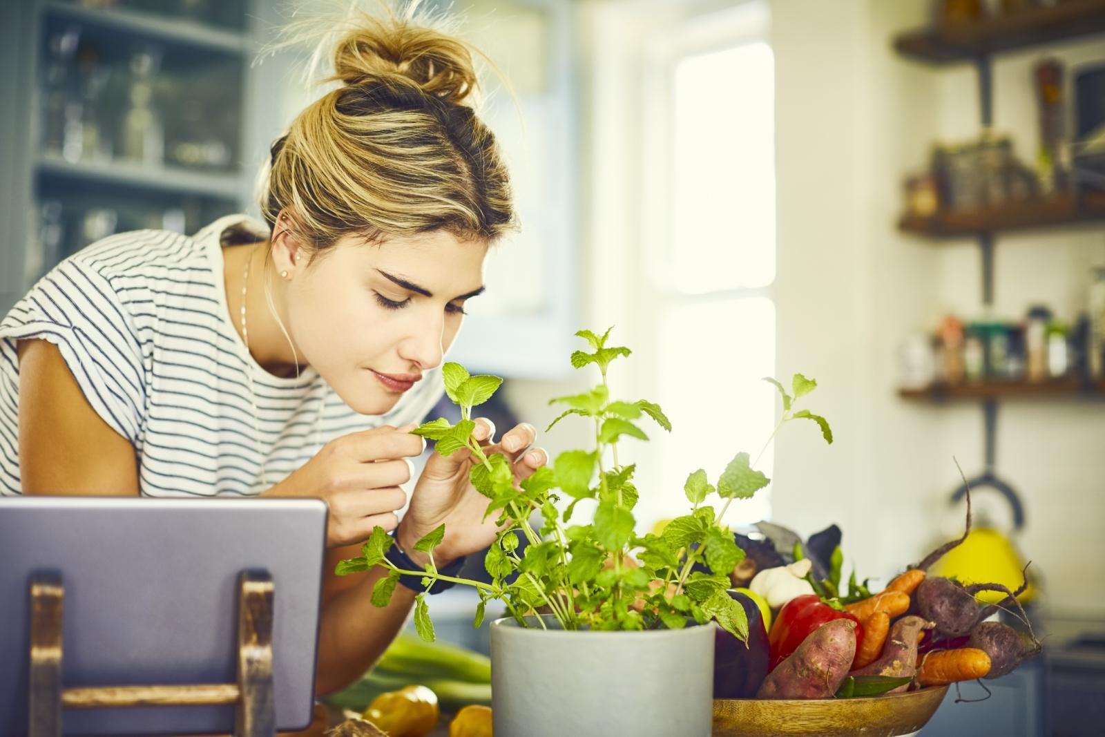Ako nemate vrt, a toliko ste puta poželjeli imati nešto uzgojeno vlastitim rukama, ideja o kuhinjskom ili balkonskom vrtu, naša vam je topla preporuka.