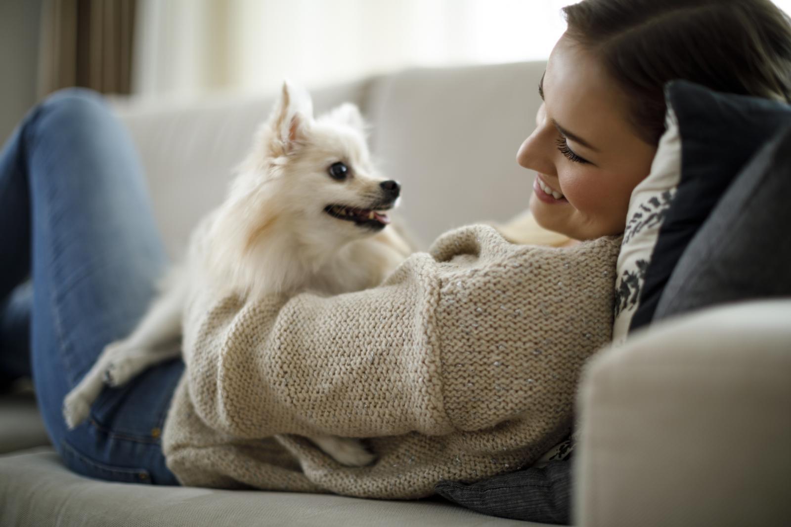 Psi smanjuju stres i tjeskobu, pomažu u otpuštanju oksicitina koji snižava tlak i razine kortizola, hormona stresa.