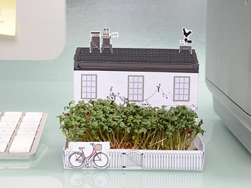 broj2_matchgarden-jardin-miniature