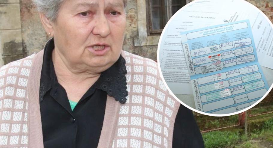 Dragica Strnad je novinarima pokazala dokumente koji pokazuju da je pas bio cijepljen