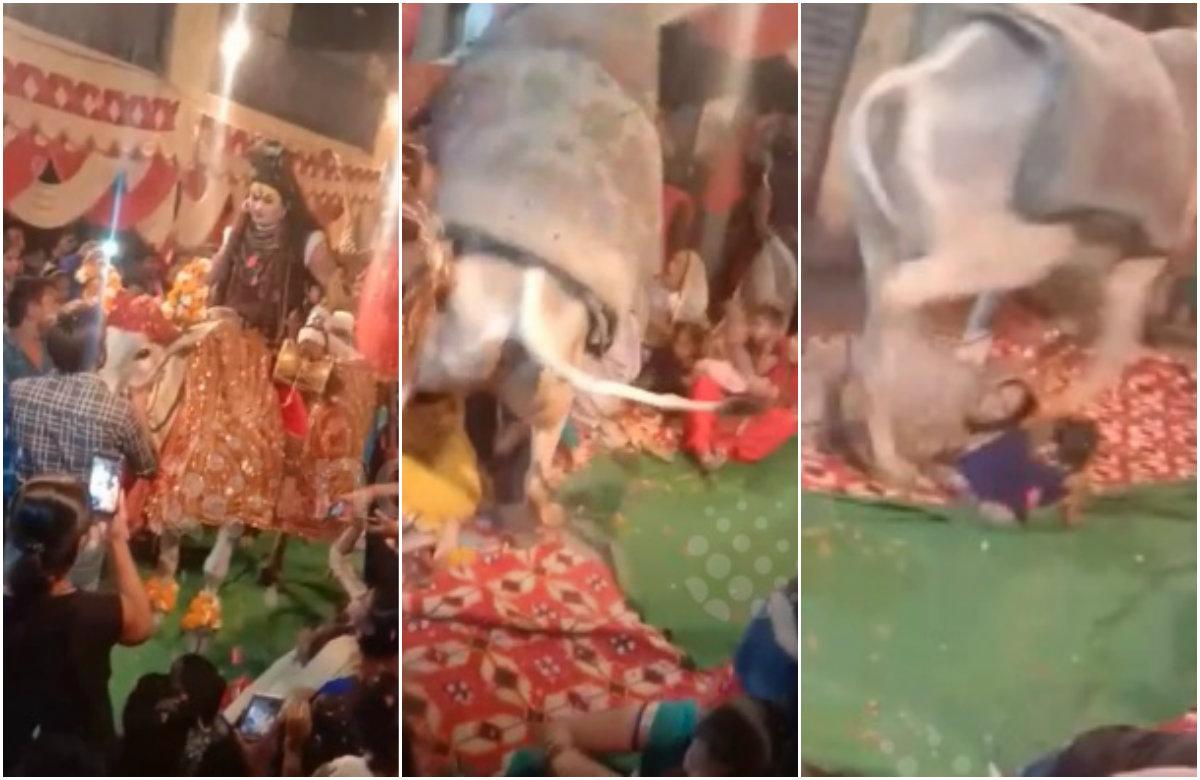Pobješnjeli bik pregazio vjernike u Indiji