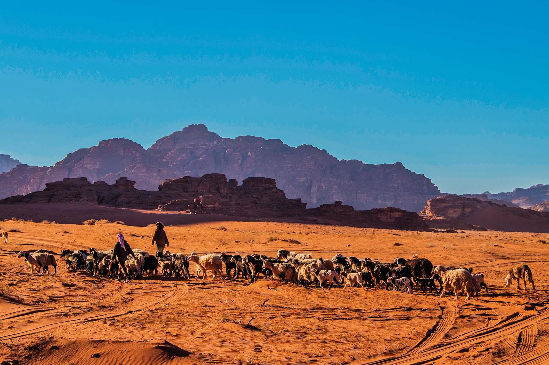Beduini u pustinji Wadi Rum