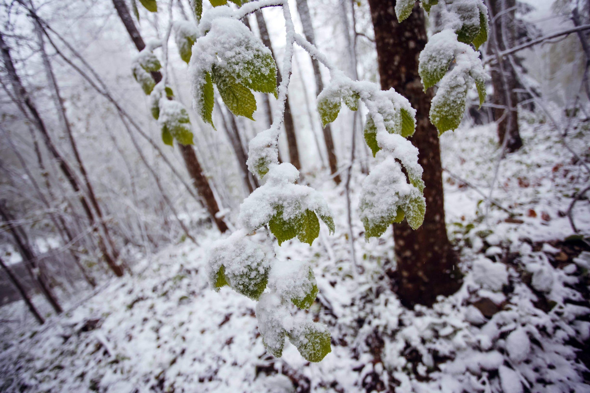 sljeme_snijeg-050519