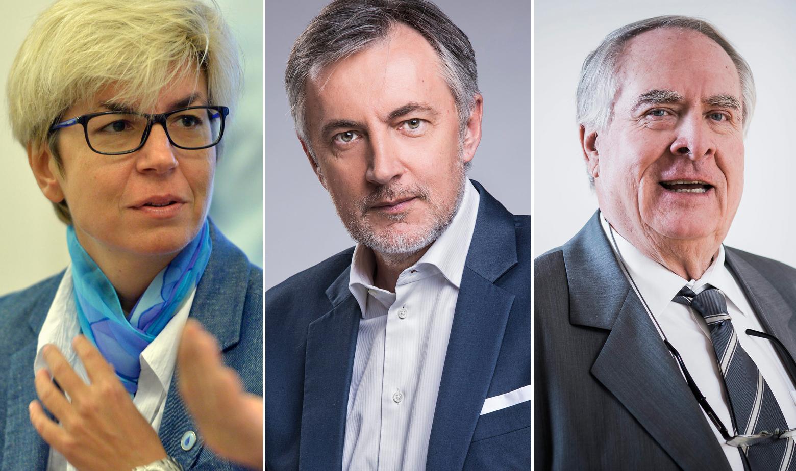 Sanja Barić, Miroslav Škoro, Branko Smerdel