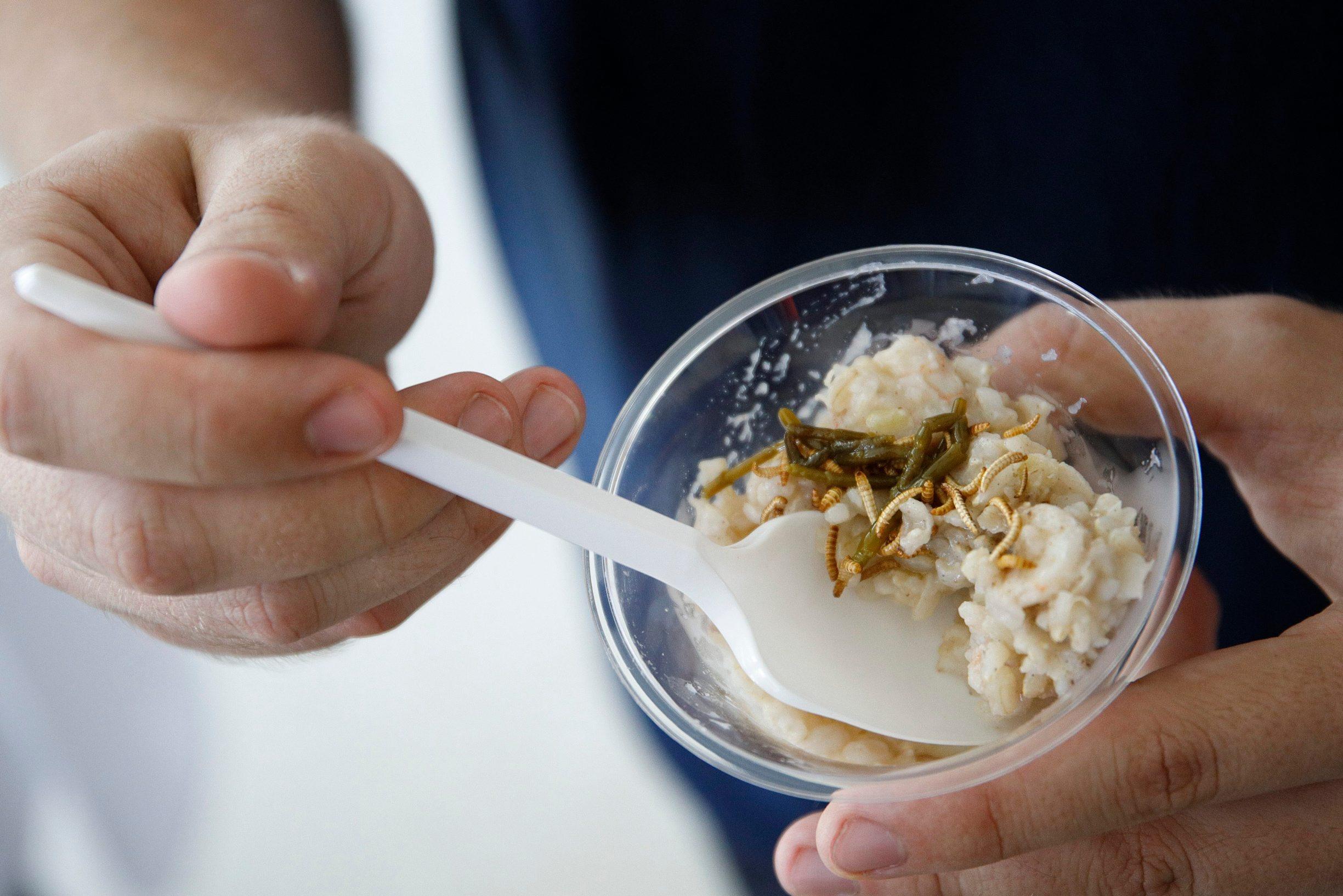 Zagreb, 260619. Nakon znanstvenostrucnog skupa Kukci na tanjuru, na Agronomskom fakultetu, kuhar Ivan Pazanin pripremio je jela od kukaca koja su degustirali nazocni. Na fotografiji: rizoto s cvrccima i crvima. Foto: Dragan Matic / CROPIX