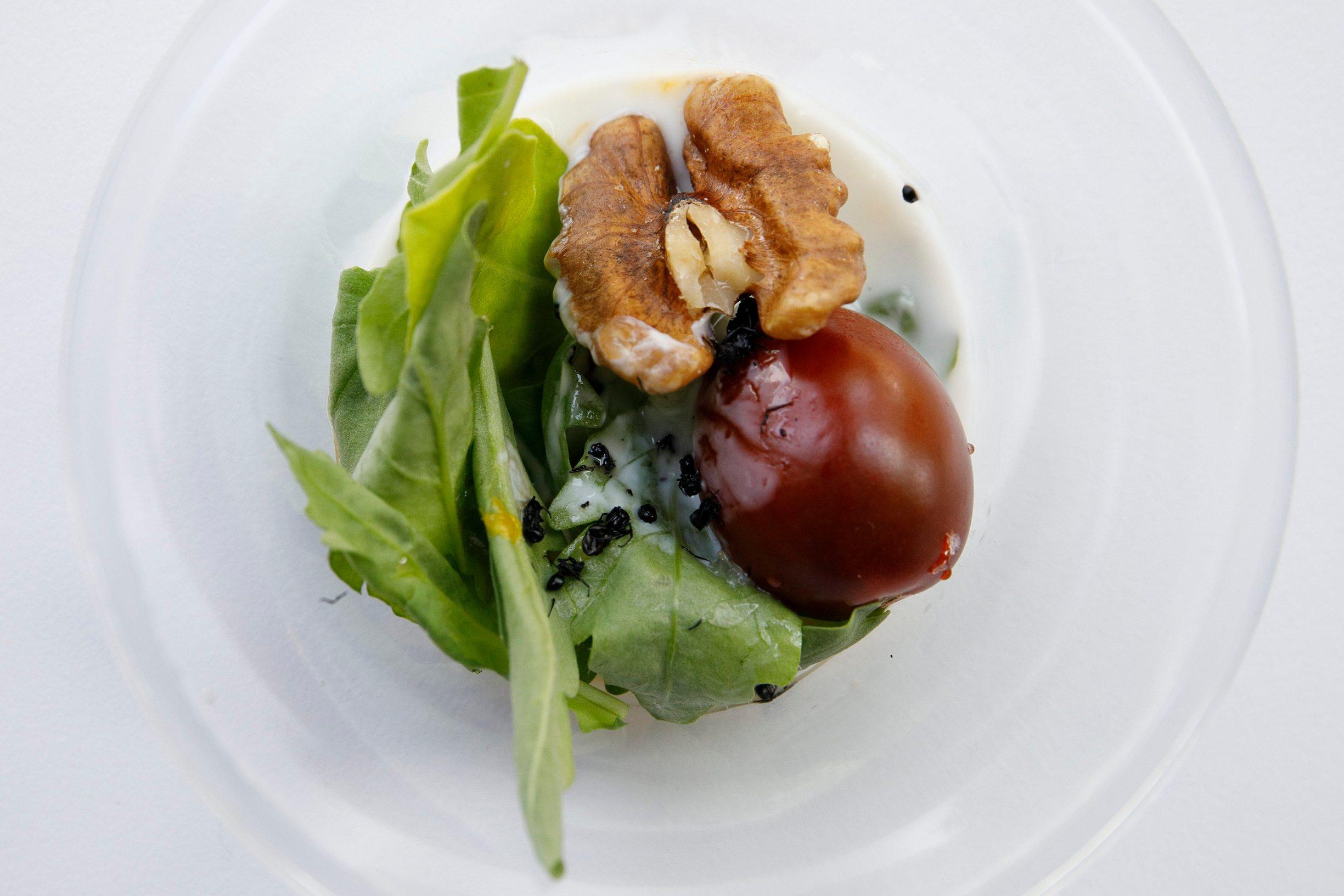 Zagreb, 260619. Nakon znanstvenostrucnog skupa Kukci na tanjuru, na Agronomskom fakultetu, kuhar Ivan Pazanin pripremio je jela od kukaca koja su degustirali nazocni. Na fotografiji: salata s mravima. Foto: Dragan Matic / CROPIX