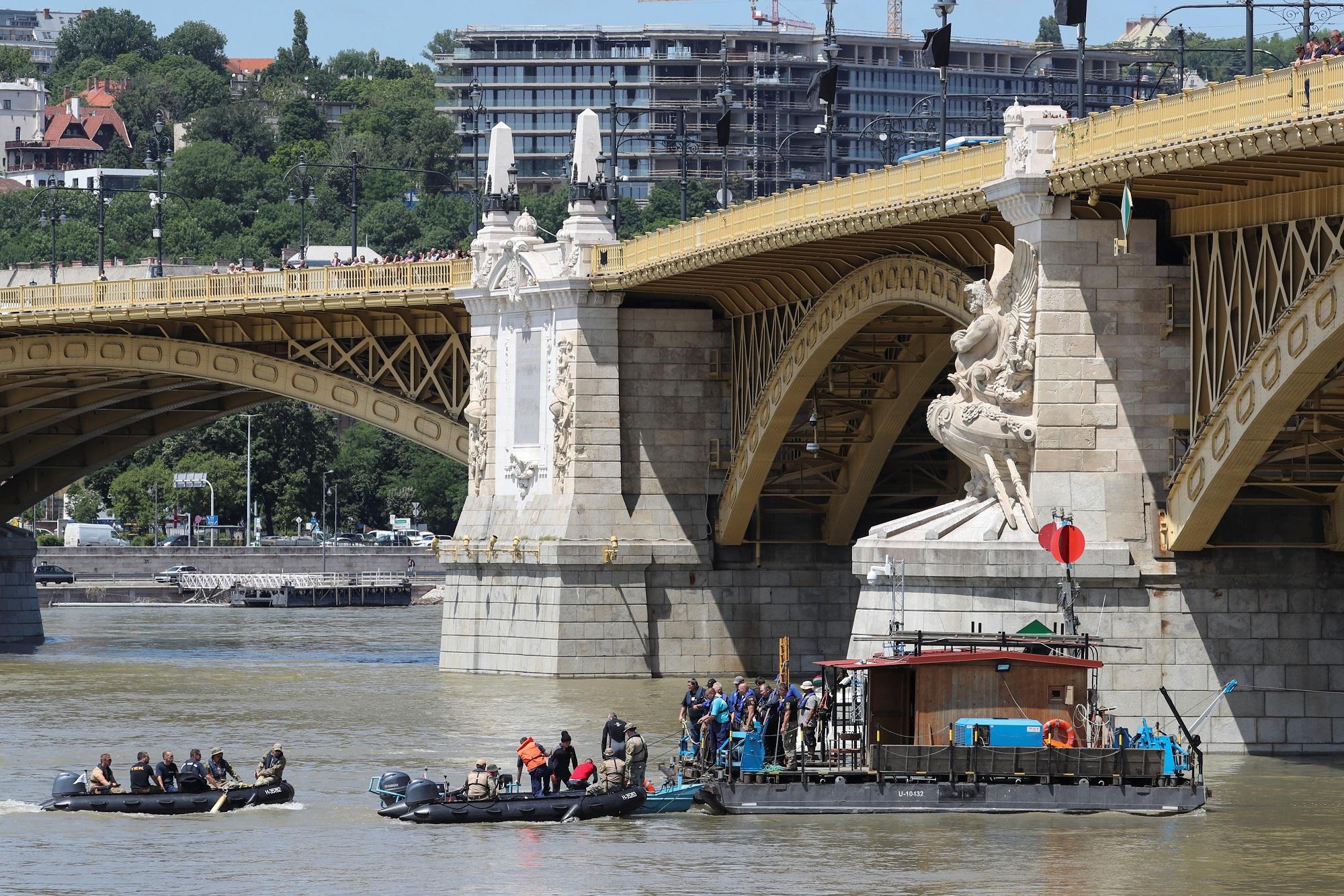Potraga za nestalima na Dunavu