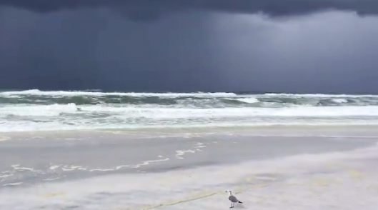 Dark clouds are seen as Storm Barry approaches near Santa Rosa Beach in Seaside, Florida, U.S., July 12, 2019 in this picture grab taken from social media video. Mark Fulford via REUTERS ATTENTION EDITORS - THIS IMAGE HAS BEEN SUPPLIED BY A THIRD PARTY. MANDATORY CREDIT. NO RESALES. NO ARCHIVES
