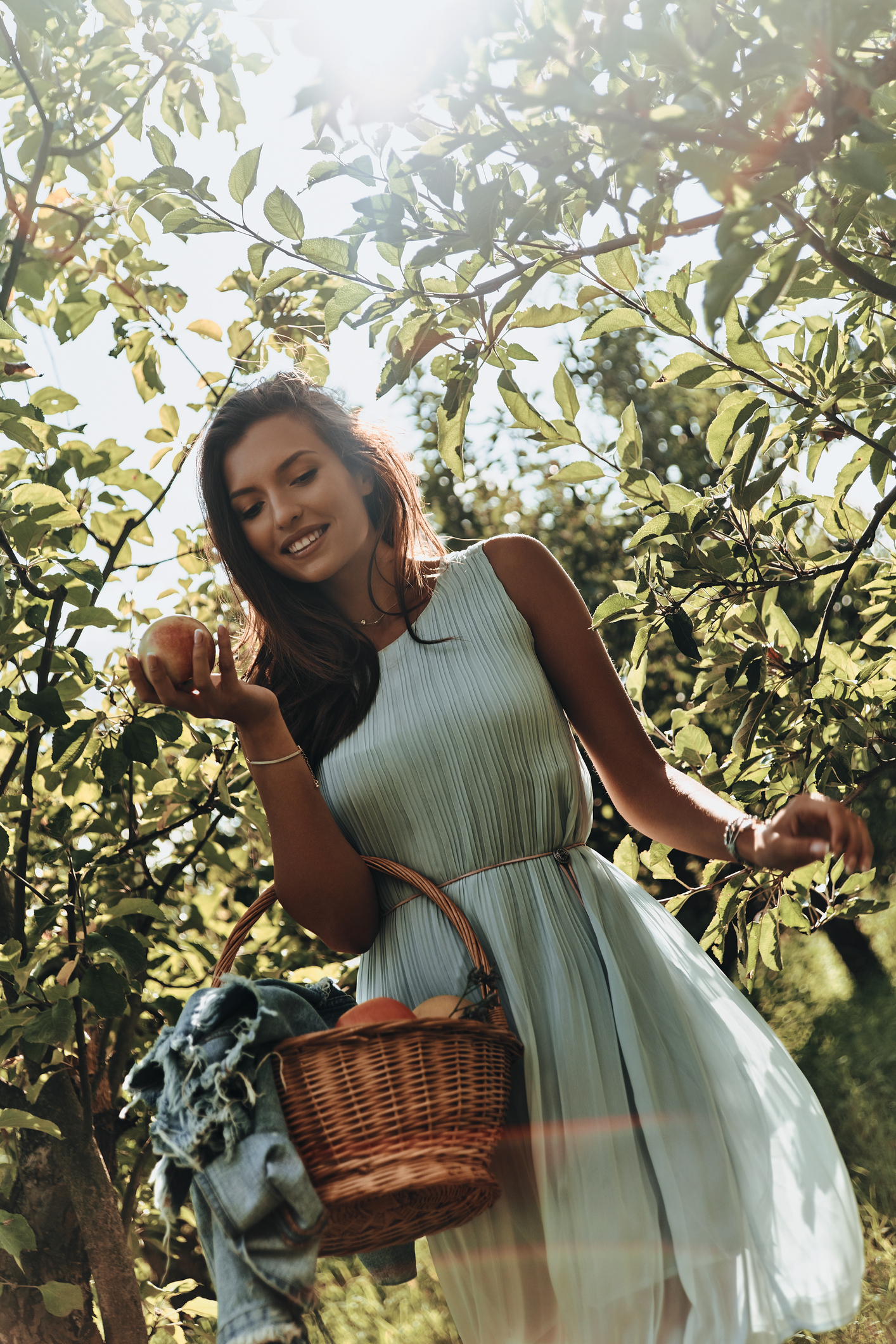 Attractive young woman carrying a basket full of apples and smiling while standing in garden