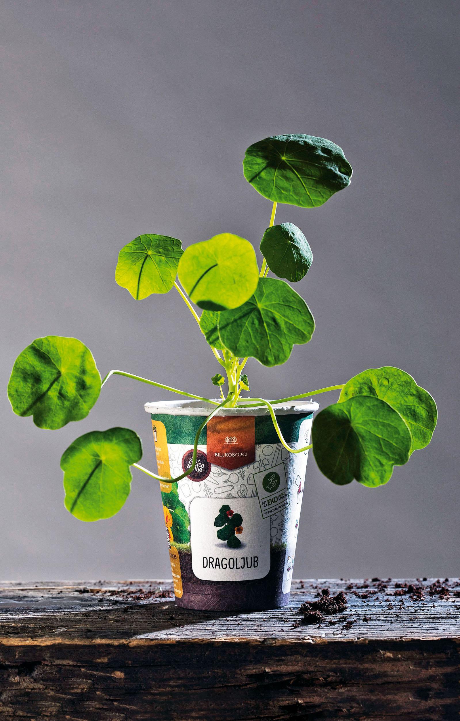 biljkoljupci-biljke6-221018_2
