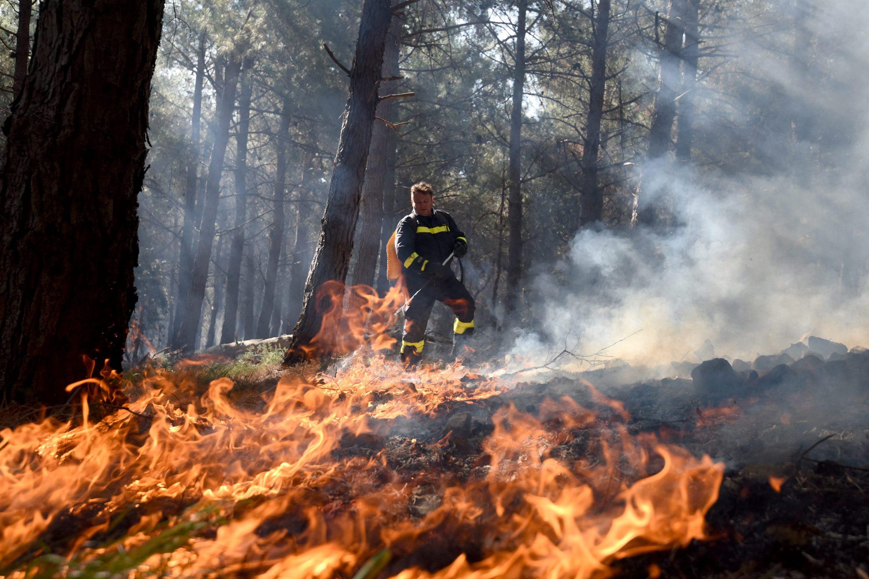 Požar u blizini plaže Zrće