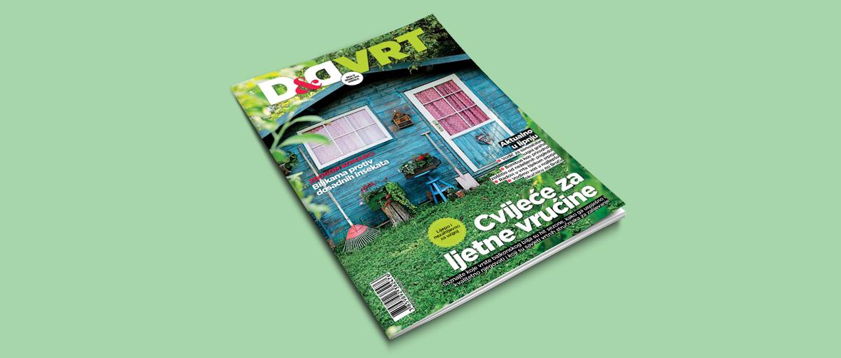 D&Dvrt-1180x502