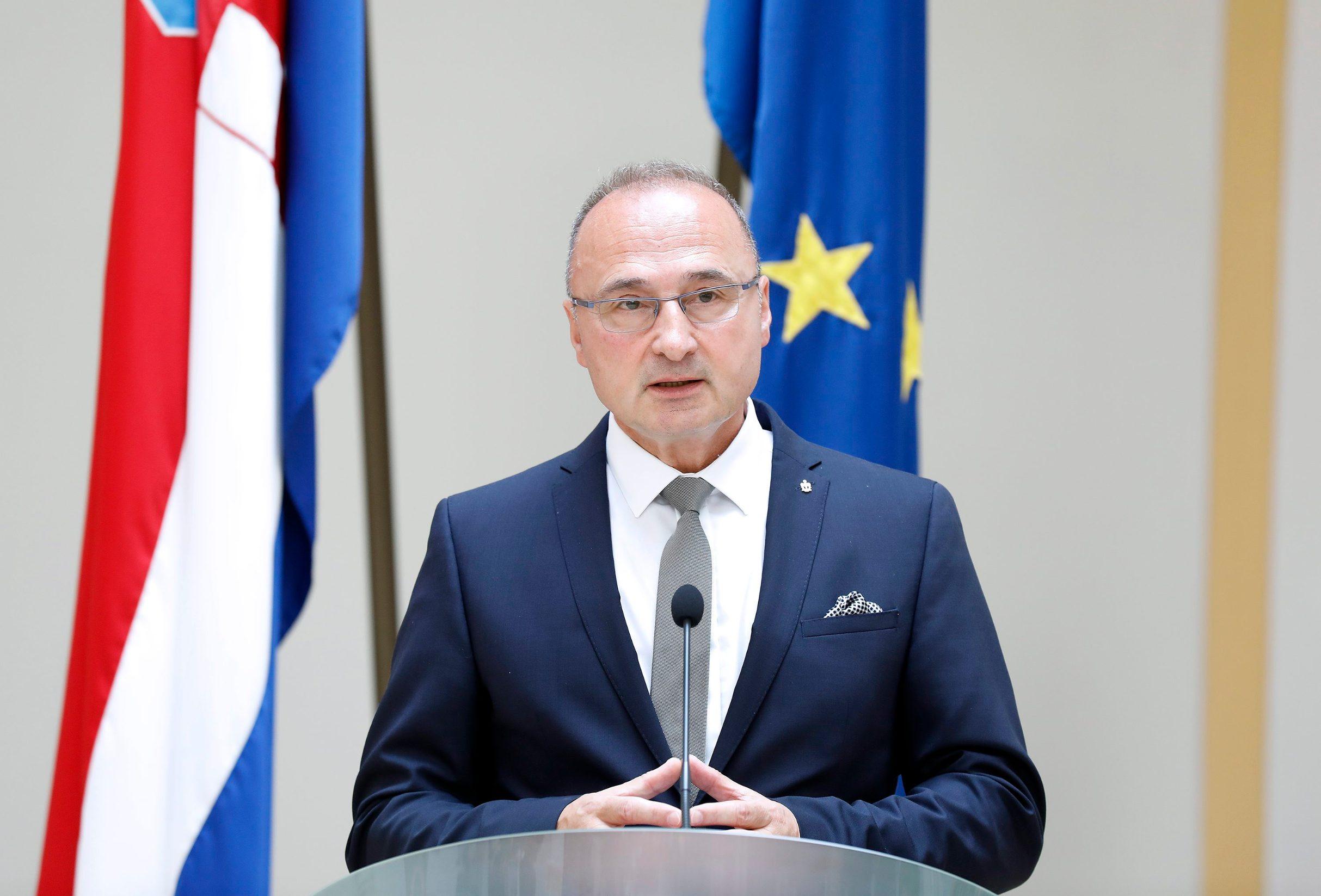 Goran Grlić Radman