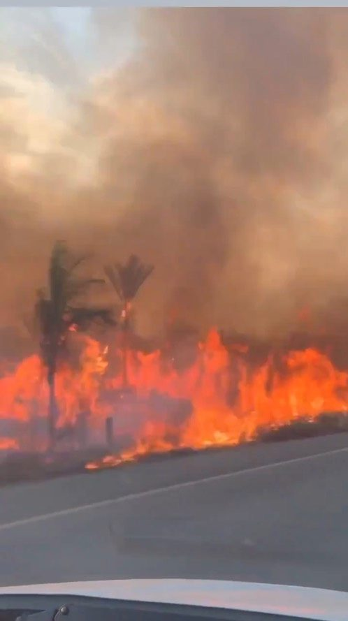 Flames are seen along the BR364 highway in Guajara-Mirim, Rondonia, the northern Brazilian state close to the amazon forest, August 14, 2019, in this still image obtained from a social media video taken inside a moving vehicle. Video taken August 14, 2019. Social Media via REUTERS. ATTENTION EDITORS - THIS IMAGE HAS BEEN SUPPLIED BY A THIRD PARTY. VIDEO OBTAINED BY REUTERS. NO RESALES. NO ARCHIVES.