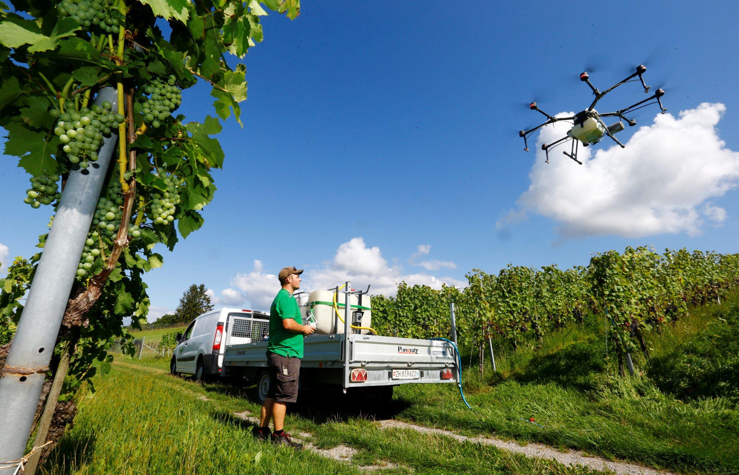 Satelitske snimke i dronovi mogu isporučiti detaljna opažanja na terenu te otkriti stresne čimbenike koji ugrožavaju biljke puno prije nego postanu vidljivi ljudskom oku