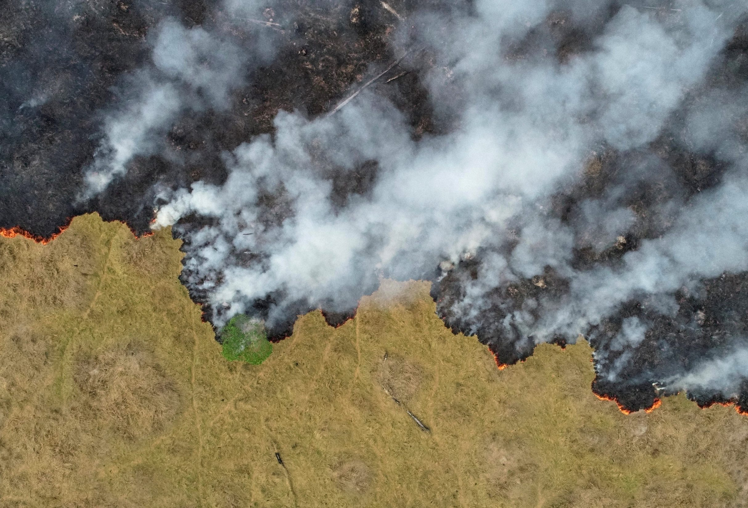 An aerial view shows smoke rising over a deforested plot of the Amazon jungle in Porto Velho, Rondonia State, Brazil, in this August 24, 2019 picture taken with a drone. Picture taken August 24, 2019. REUTERS/Ueslei Marcelino     TPX IMAGES OF THE DAY