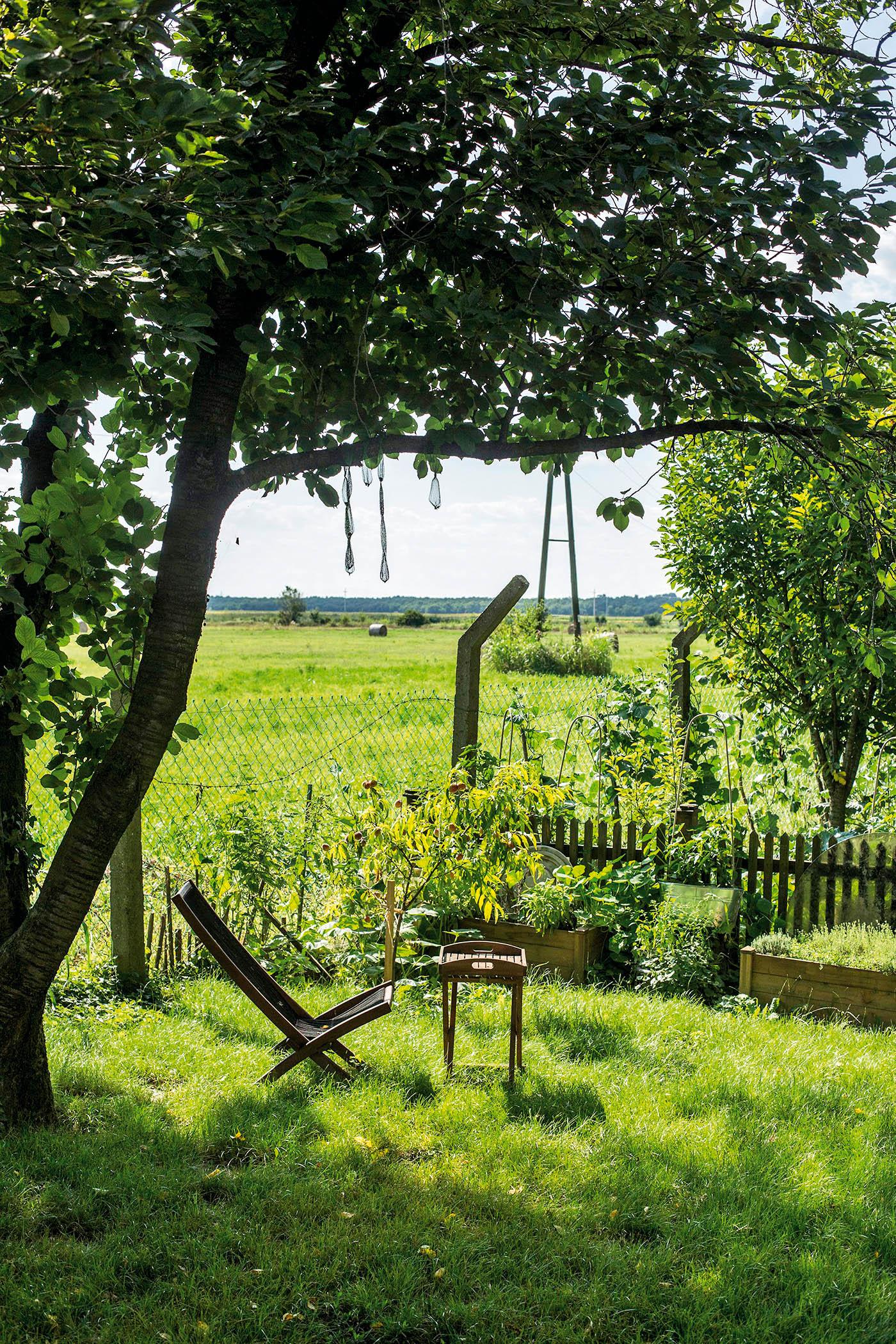 Osijek, 160719. Fotograf Mario Romulic u Bilju pored Osijeka ima imanje na kojem uzgaja povrce i voce. Primjenjuje sve najnovije i eko nacine proizvodnje.Unutar imanja je i veliki staklenik za usgoj, sadnju i klijanje povrca.Kulture uzgaja i na otvorenom u vise tipova sadnje; lazanja gredica, uzdignute gredice...itd. Na imanju se nalazi obiteljska kuca u kojoj Mario zivi s obitelji dva sina i kcer, ali i puno zivotinja; kokoske, psi, macke i jedna mala kuca za goste. Foto: Berislava Picek / CROPIX