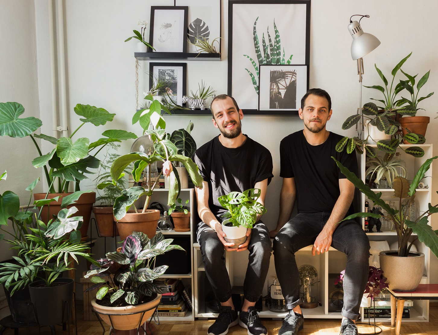 Dnevna doza biljaka projekt je nastao iz ljubavi prema biljkama, a iza njega stoje osnivači Leon i Tomislav iz Zagreba.