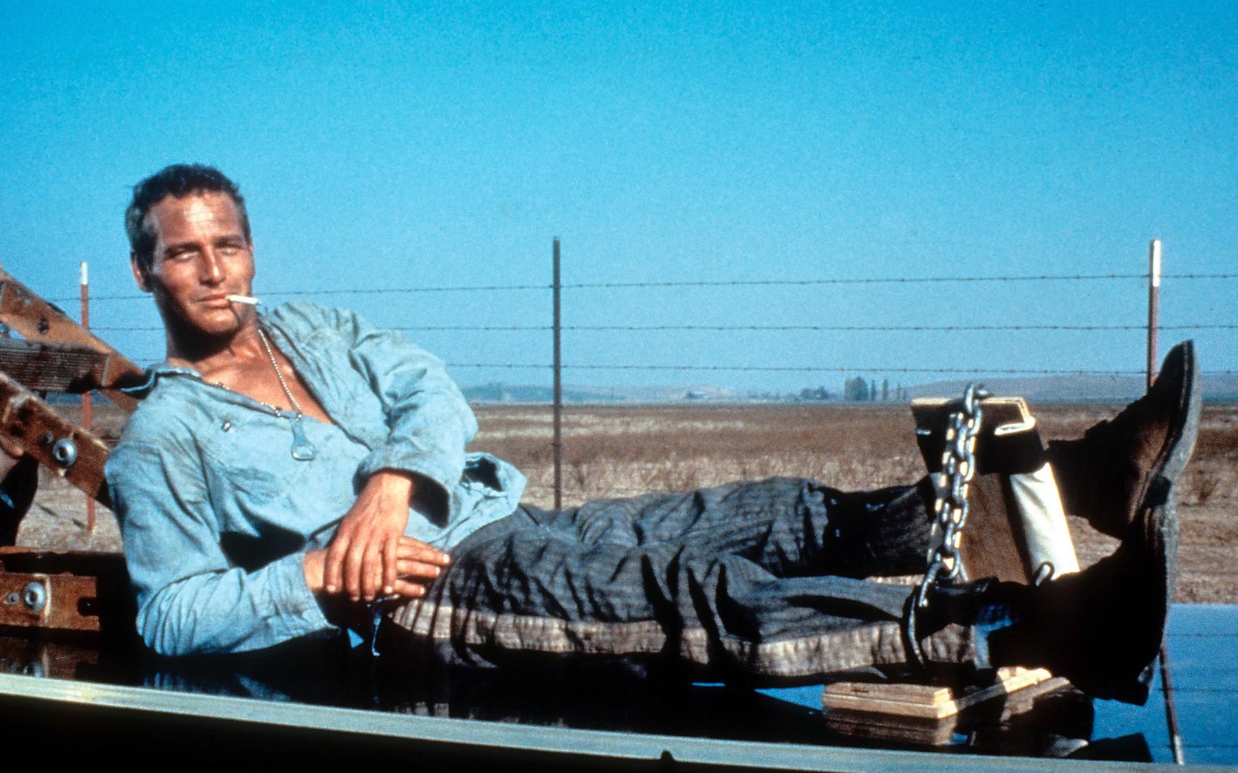 Paul Newman,
