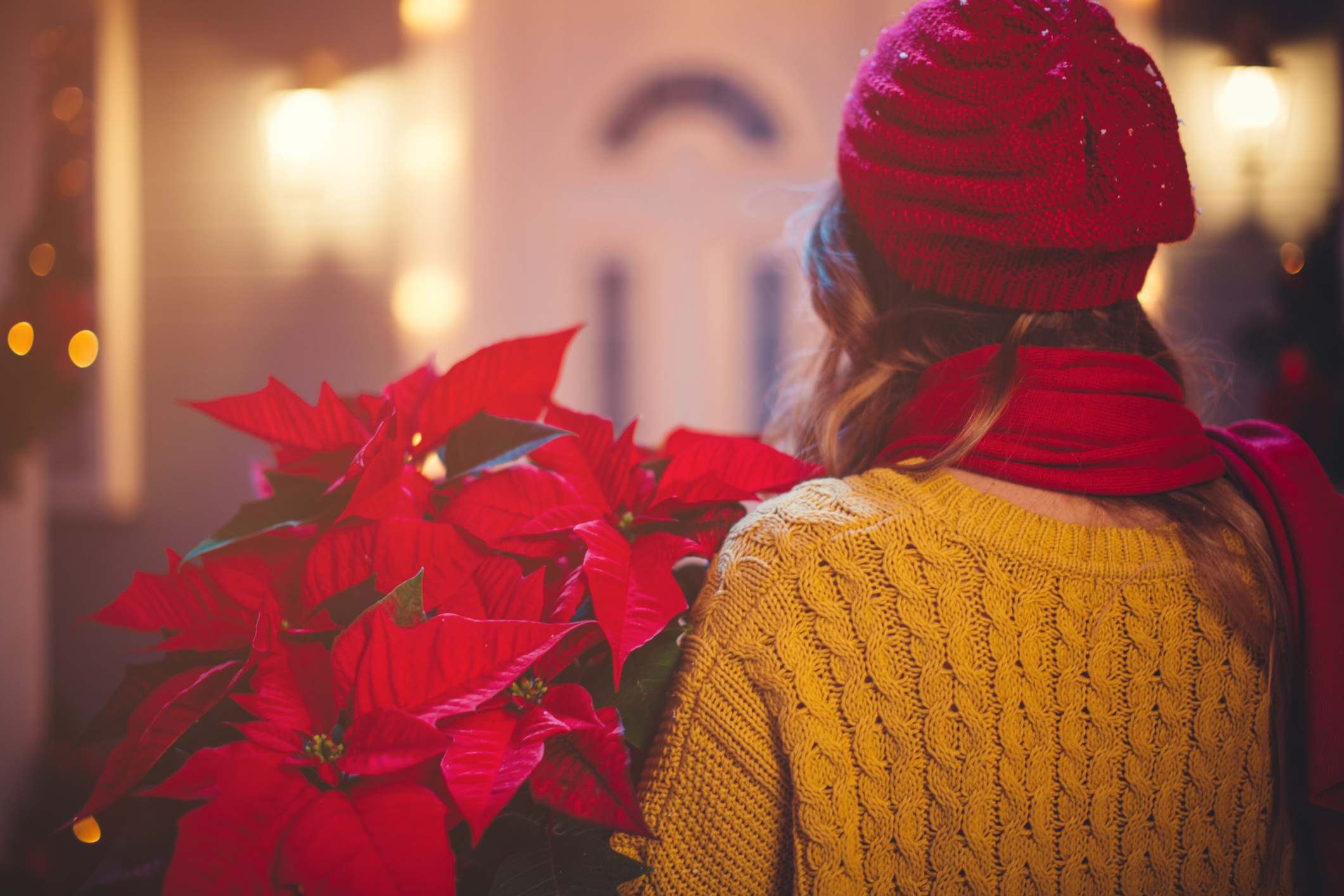 Rear view of caucasian woman outdoors in front of house. Holding christmas flowers. Wearing knitted sweater, hat and scarf. House, yard and tree are decorated with festive string lights. Evening or night with beautiful yellow lights lightning the scenes.