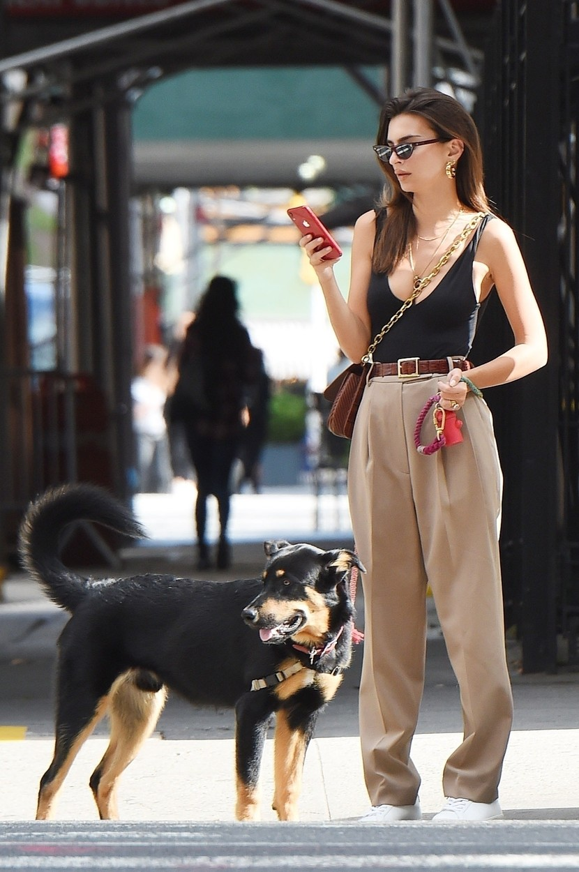 New York, NY  - *EXCLUSIVE*  - Emily Ratajkowski, stepping out in a plunging black top and pleated khakis,  takes her pup Colombo to the park! The growing pup plays catch with Emily and Colombo proves to be quite the trained pup catching the tennis ball and returing it to Emily.  *UK Clients - Pictures Containing Children Please Pixelate Face Prior To Publication*, Image: 475535627, License: Rights-managed, Restrictions: , Model Release: no, Credit line: @JosiahWPhotos / BACKGRID / Backgrid USA / Profimedia