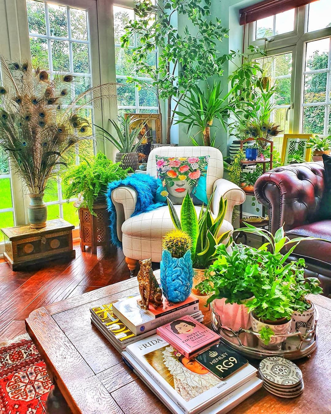 dekorativne biljke