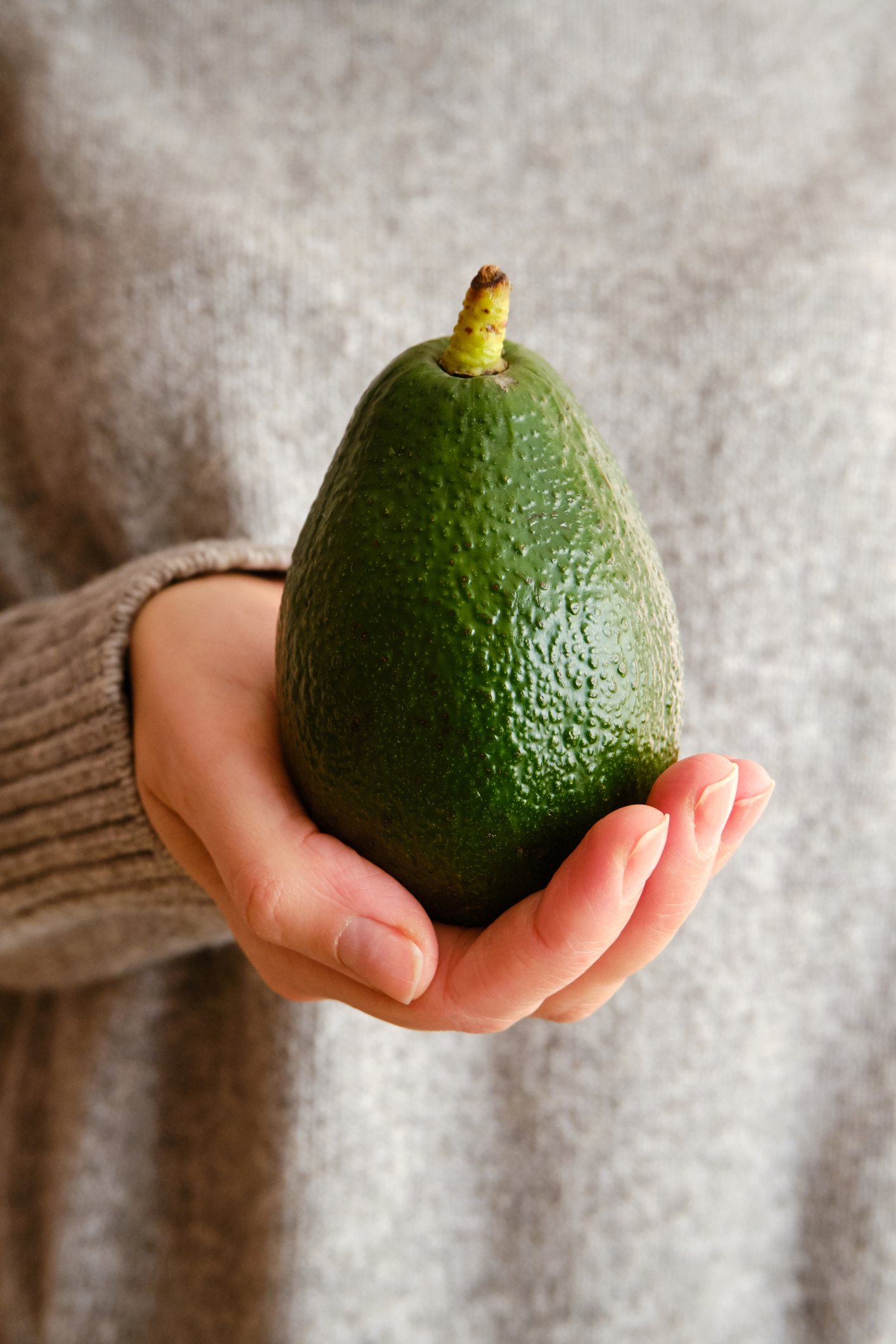 A woman holds green avocado in her hands. Avocado closeup. Natural fresh organic exotic fruit. Healthy eating, raw food diet. Vegetarian lifestyle. Proper nutrition. Ready to eat. Eco product. Poster