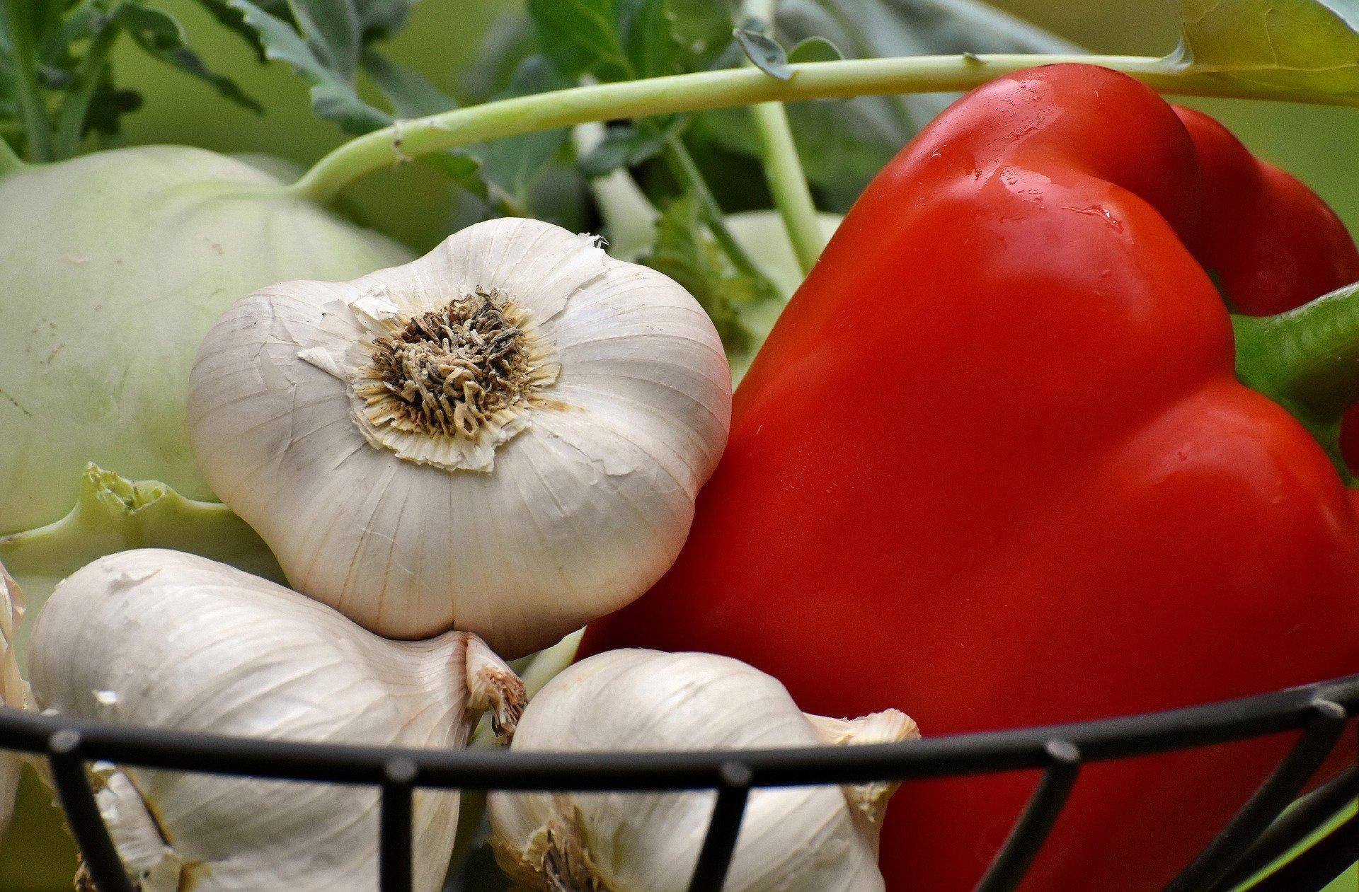 vegetables-3483075_1920