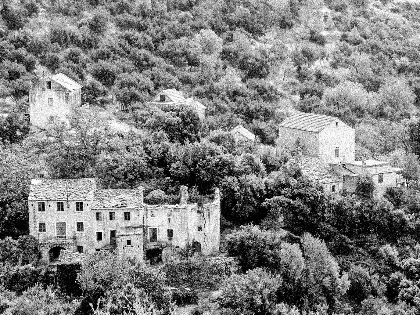 Prvi potres magnitude 5,9 stepeni udario je 7. siječnja 1962. u jedanaest sati prije podneva, te je porušio i oštetio kuće u mnogim selima južno od Makarske, onim u brdu, kao i onim malobrojnijim i dotad siromašnijim, ribarskim, uz obalu