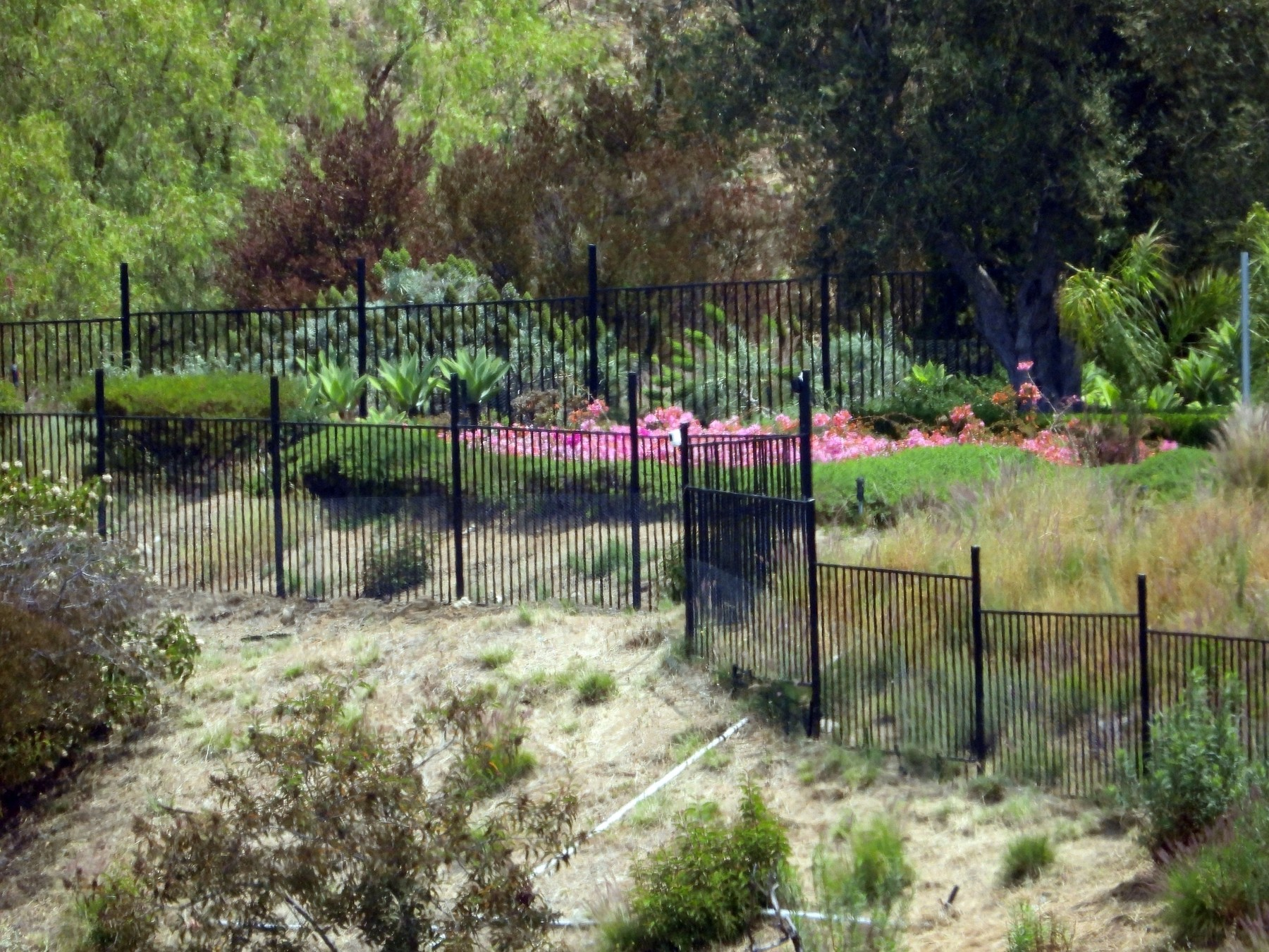 Beverly Hills, CA  - *EXCLUSIVE*  - New screens are erected by workmen at the Beverly Hills mansion owned by Tyler Perry, now reportedly the American home of Prince Harry, his wife Meghan Markle and their baby son, Archie. These photos were taken from a hiking trail close to the  million property which opened to the public on Saturday, May 9, 2020. A hiking trail leads up a steep hill to the edge of the property, where a security camera is situated. There are also security cameras set up on fences dotted around the home. From the mansion, it is also possible for the Duke and Duchess of Sussex to look down at the homes of showbiz royalty Sylvester Stallone, Mark Wahlberg and Rod Stewart who all own multi-million dollar mansions in the neighboring Beverly Park estate. Sylvester Stallone's home is the one with the outdoor pool, Rod Stewart's is the French-style mansion and it is just possible to see his soccer pitch, while Mark Wahlberg's home has what appears to be a circular turret.  BACKGRID USA 11 MAY 2020, Image: 518624861, License: Rights-managed, Restrictions: , Model Release: no, Credit line: BACKGRID / Backgrid USA / Profimedia