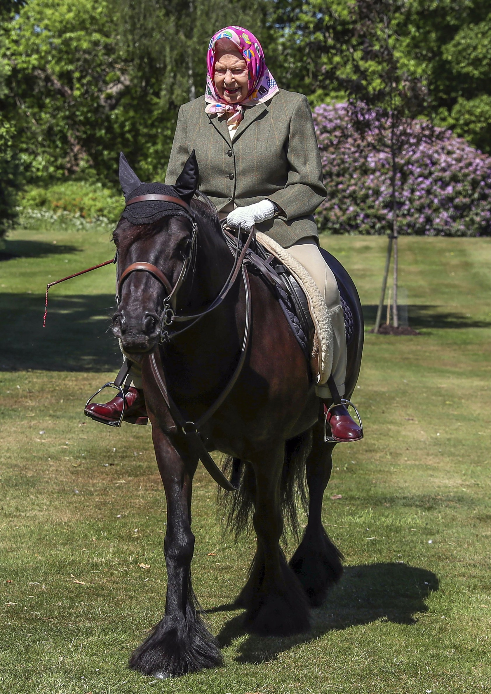 May 31, 2020, Windsor, United Kingdom: Image licensed to i-Images Picture Agency. 31/05/2020. Windsor, United Kingdom.  Queen Elizabeth II rides Balmoral Fern, a 14-year-old Fell Pony, in Windsor Home Park over the weekend. The Queen has been in residence at Windsor Castle during the coronavirus pandemic.,Image: 524422533, License: Rights-managed, Restrictions: * China, France, Italy, Spain, Taiwan and UK Rights OUT *, Model Release: no