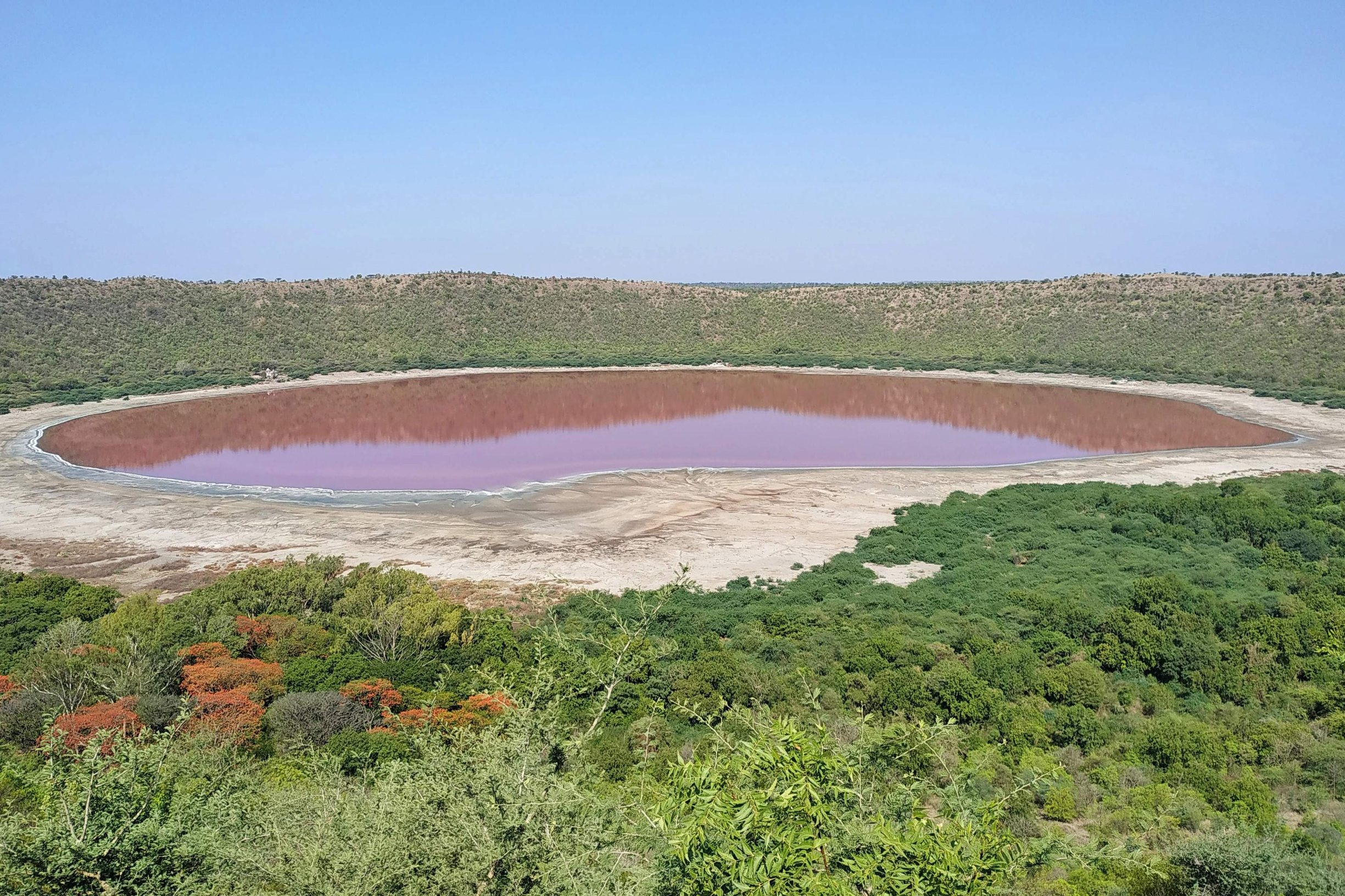 A general view of Lonar crater sanctuary lake is pictured in Buldhana district of Maharashtra state on June 11, 2020. - The lake has turned pink in colour which is believed that when the water level goes down, the salinity increases and warm water gives a rise to algae that tends to absord sunlight and changes the colour of the water, local media reported. (Photo by STR / AFP)
