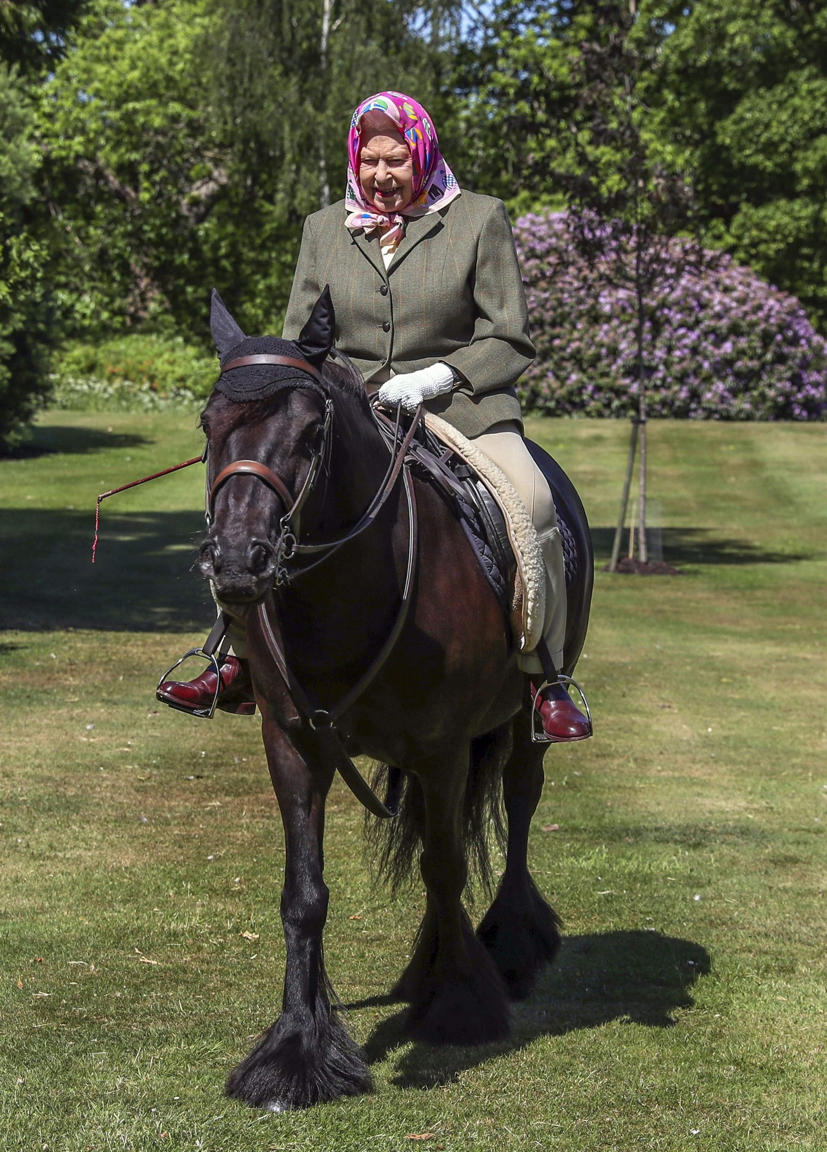 Britain's Queen Elizabeth II rides Balmoral Fern, a 14-year-old Fell Pony, in Windsor Home Park, west of London, over the weekend of May 30 and May 31, 2020. (Photo by Steve Parsons / POOL / AFP)