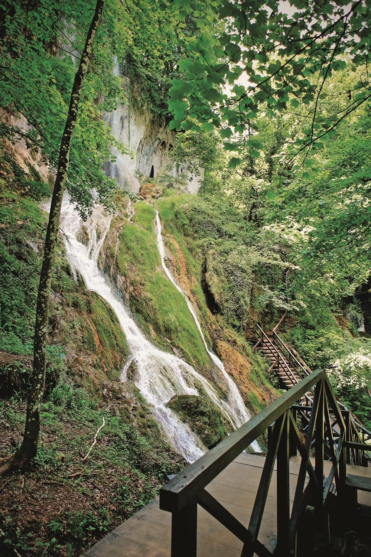 Viroviticko podravski kraj 10.06.2019 Park suma Jankovac - Park prirode Papuk na slici: foto vedran peteh