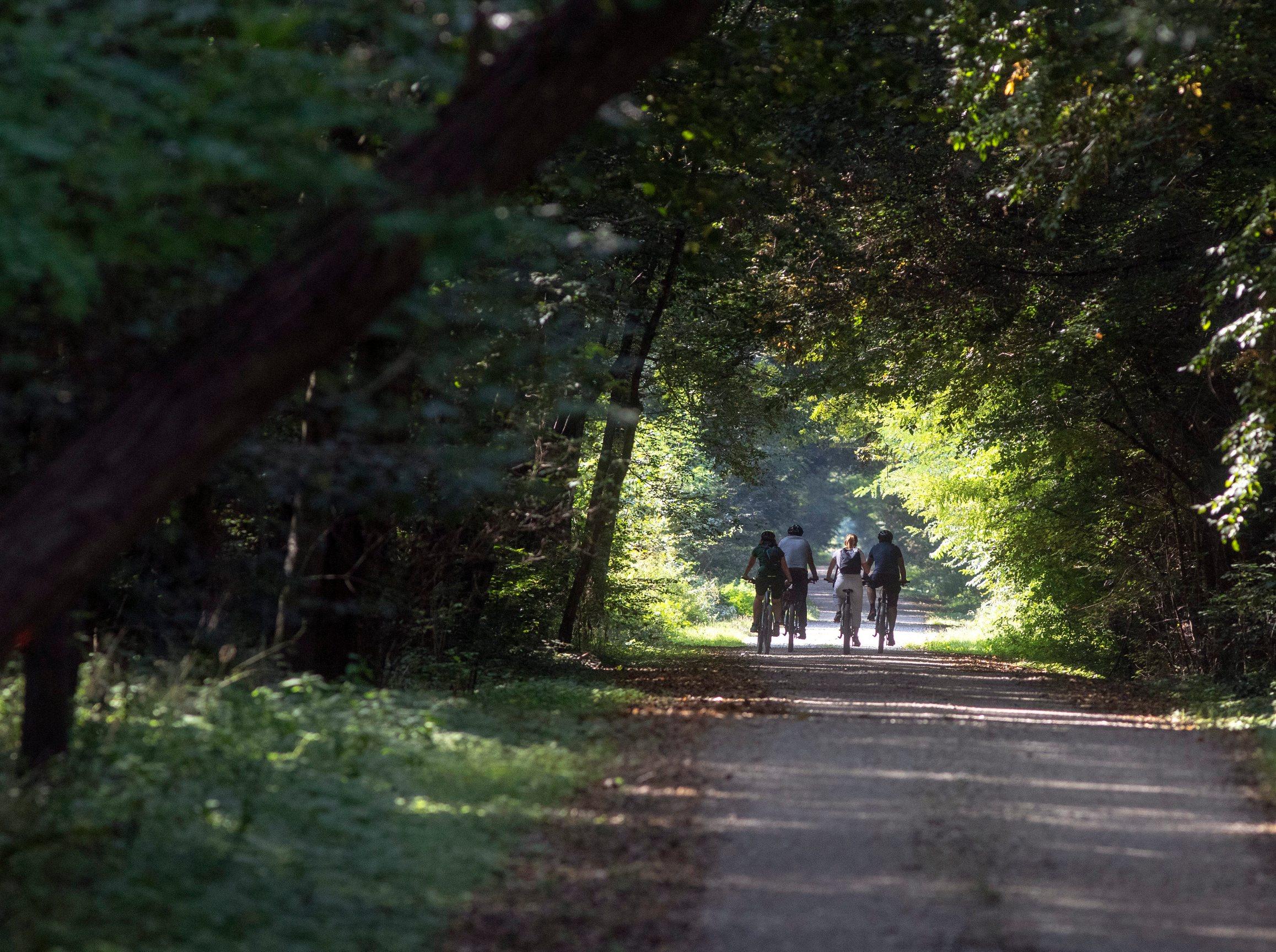 SPECIJAL LIKE JUTARNJI! Ludbreg, 210920. Reportaza o biciklistickoj stazi oko Ludbrega za Like. Foto: Zeljko Hajdinjak / CROPIX