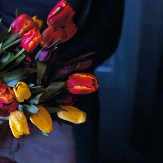 lukovice-tulipani1-120218