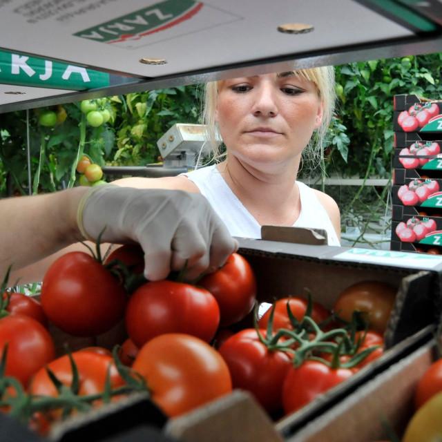 Ilustracija, domaći uzgajivači povrća