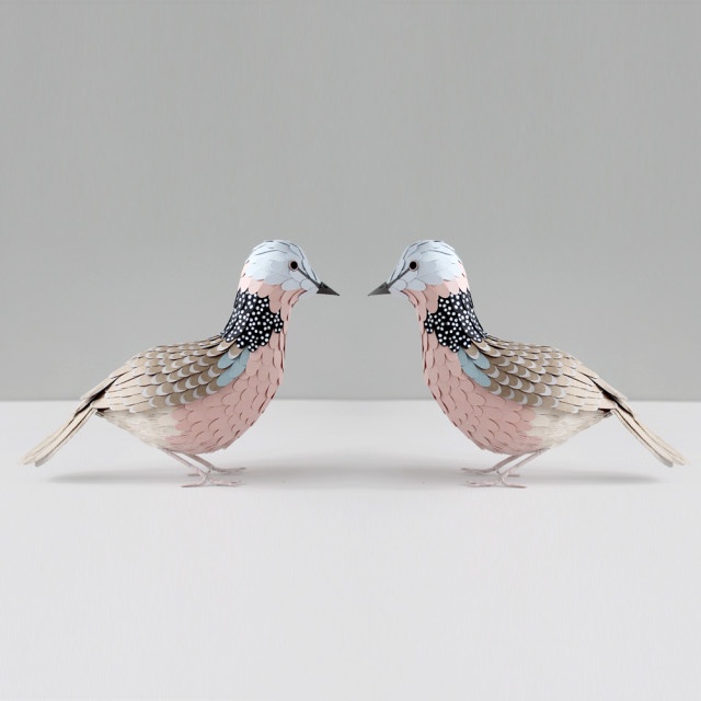 12-Days-of-Christmas-2-Turtle-Doves