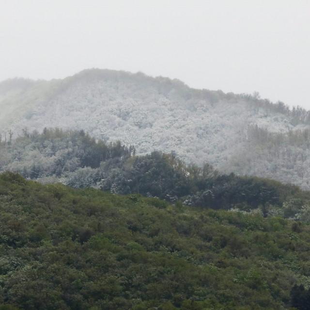 snijeg_zg10-140420