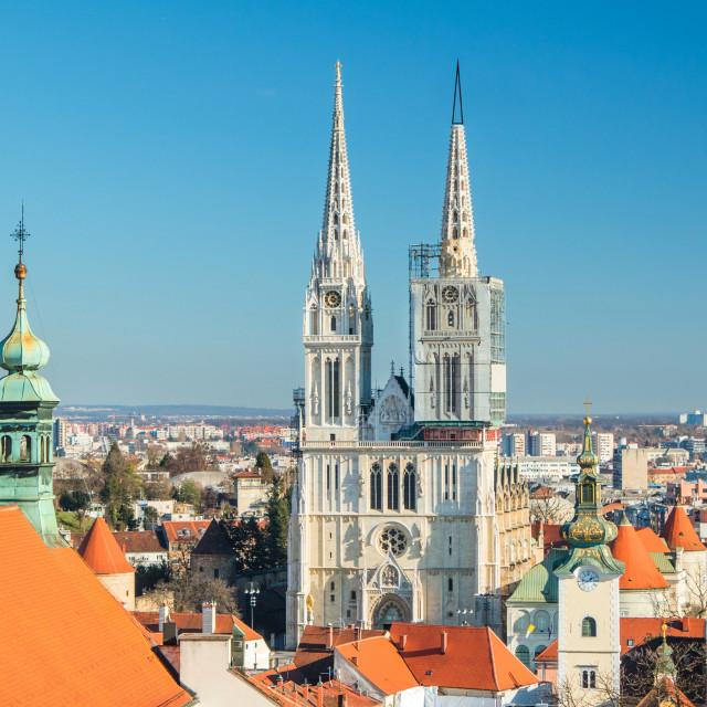 katedrala_prijedlog_hires